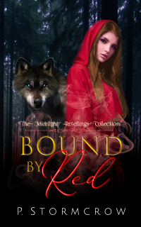 cover3-ebook-kindle